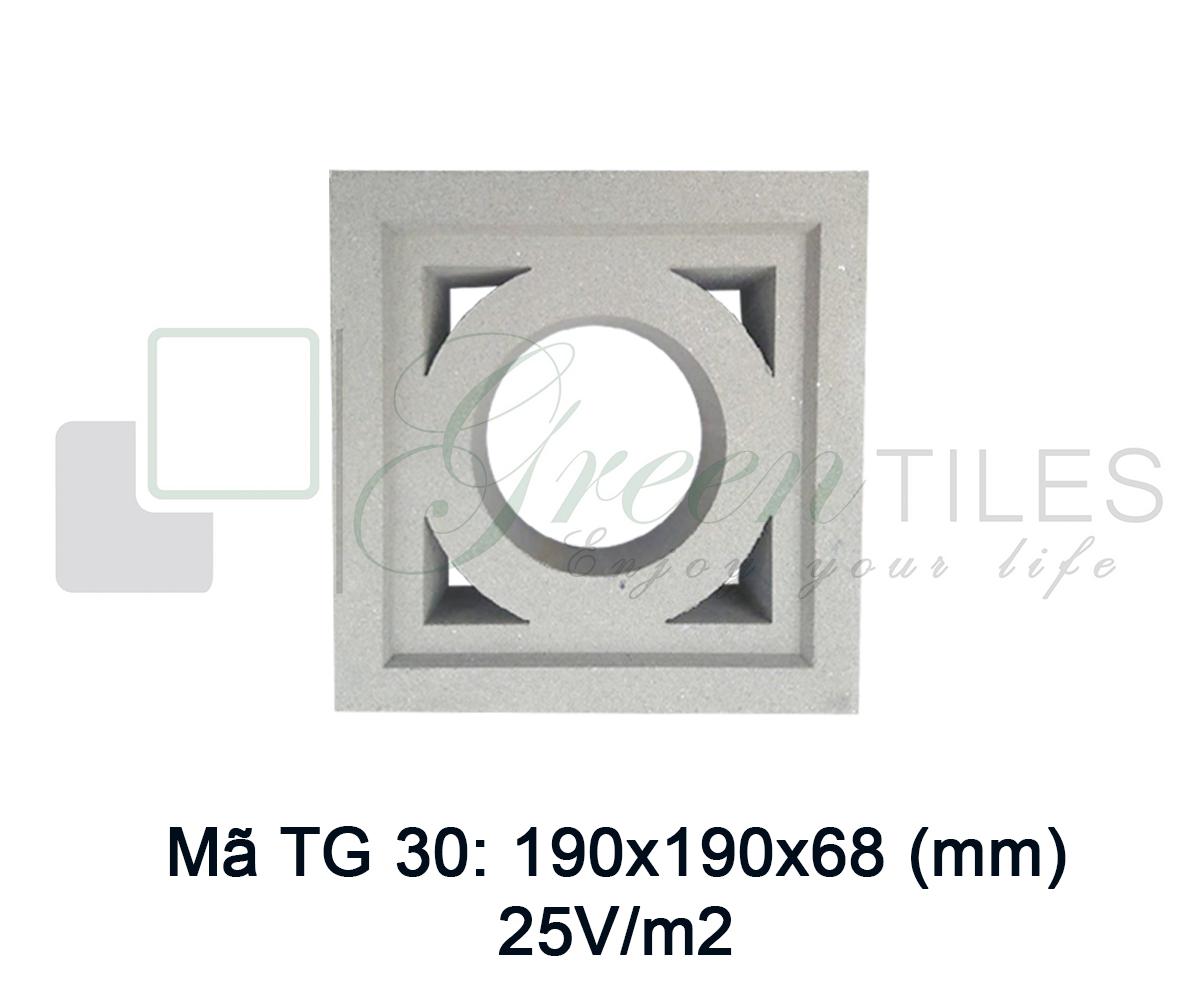 Gạch thông gió TG30